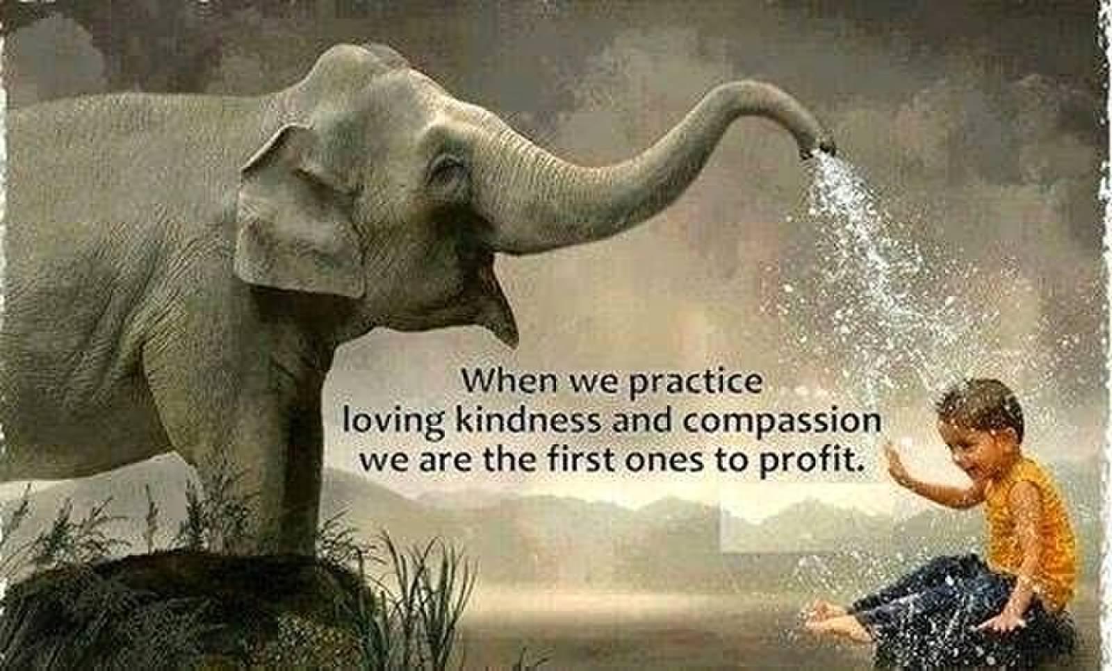 Kindness-Compassion