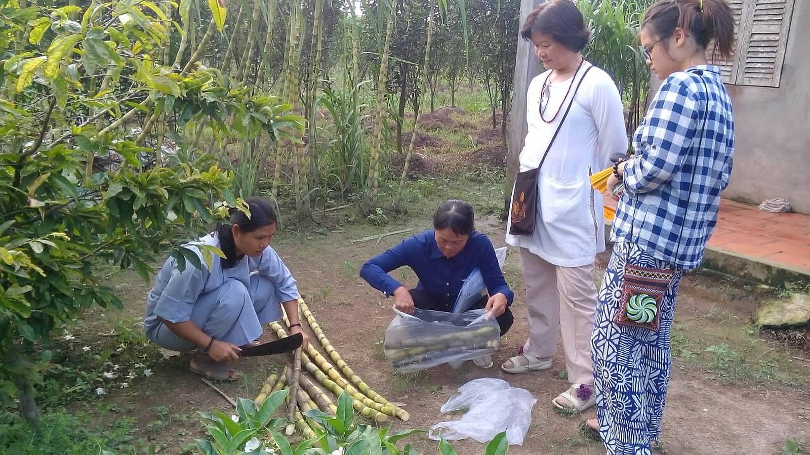 vay von khong loi (84)